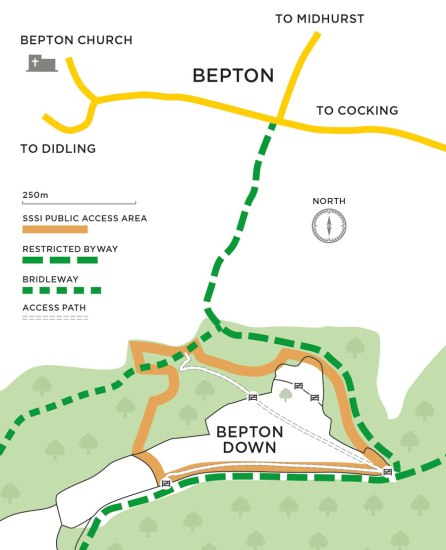 Bepton-Down-Map