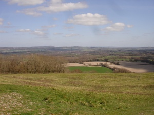 Bepton Down in the very early spring.